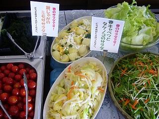 春のサラダです。.jpg